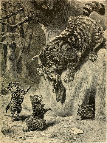 Wildkatze in Brehms Tierleben